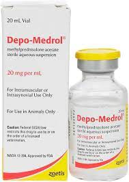 Depo-Medrol for Dogs & Horses