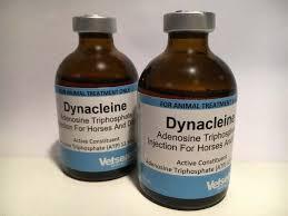 Dynacleine